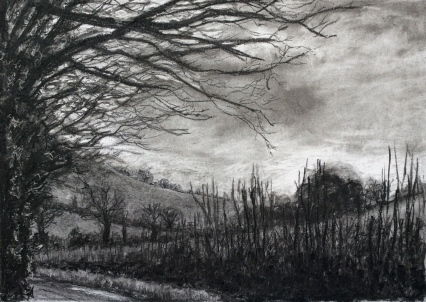 Down Lillypool Way, Charcoal