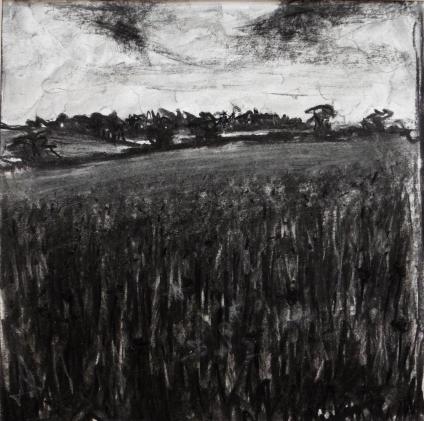 Mendip Field, Charcoal