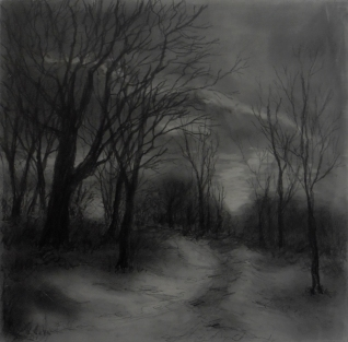A Walk in the Woods, Graphite on panel