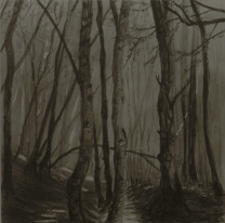 A Walk in the Woods III, Graphite on panel