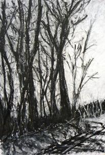 Mendip Trees, Oil on paper