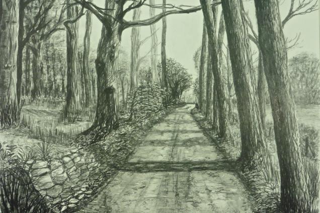 Avenue of Trees, Mendip Hills