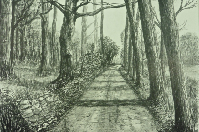 Avenue of Trees, Mendip Hills