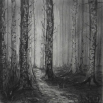 A Walk in the Woods series