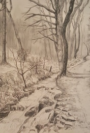 """A Walk in the Woods III, Graphite, 14"""" x 11"""""""
