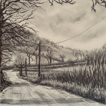 'Down Lillypool Way', Graphite
