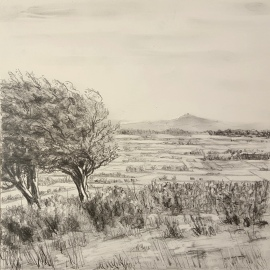 "Towards Glastonbury, Graphite on board 8"" x 8"""